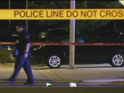 9-year-old killed, mom & sibling hurt in hit-and-run near Chicago