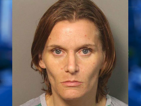 Dog dies after being left in hot car for hours; woman charged