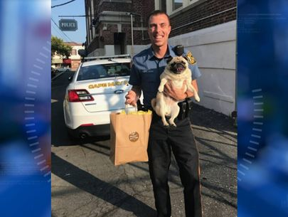 Dog takes 'pugshot,' bail paid in cookies after 'arrest'