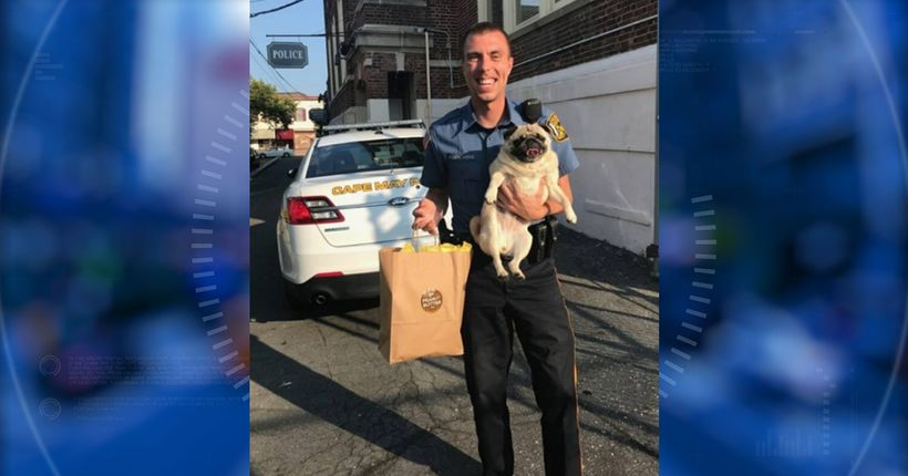 Dog takes 'pugshot,' bail paid in cookies after N.J. 'arrest'