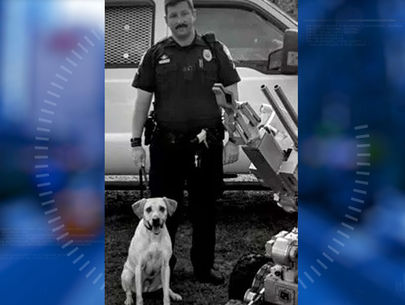 K9 dog dies in hot police vehicle; no charges for officer handler