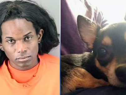 Woman gets 3 years for throwing dog off seventh floor of parking garage
